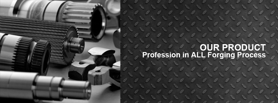 DF Precision forging products